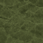 SIWA_color_dark_green.jpg
